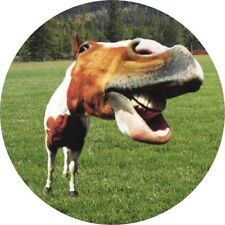 FUNNY FACED HORSE TAX DISC STATIC CLING CAR, VAN VEHICLE TAX DISC HOLDER