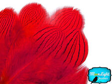 1 Dozen - Red Silver Pheasant Plumage Barred Feathers Fly Tying Jewelry Costume