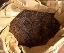 semi di lino 2 kg
