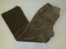 pants Venezia Velour Plus 26 Green/Gold Stretch