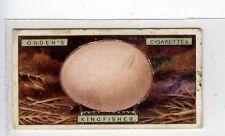 (Jc2961-100)  OGDENS,BIRDS EGGS,KINGFISHERS EGG,1923,#19