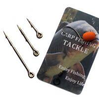 20pcs Metal Bait Spike Phoxinus Carp Fishing Hook Bait Sting Boilies Pin Spike