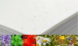 Seeded Craft Paper A4 A5 A6 Sheets Size Choose Size and Seeds 200GSM Plantable