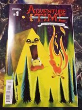 Adventure Time 2013 Summer Special#1 Cover A Kaboom! Comic NM J&R