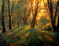 Sunlight through the woods landscape oil painting Canvas Giclee Art Print L1920