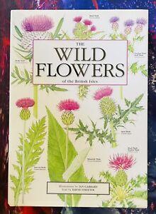 The Wild Flowers of the British Isles by Streeter, David Hardback 1998