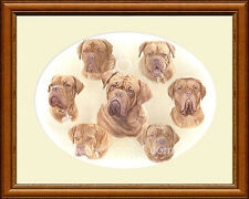 DOGUE DE BORDEAUX  Giclee dog print by Lynn Paterson