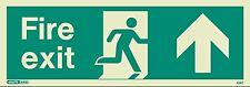 Jalite Photoluminescent Emergency Exit Sign - Up Arrow