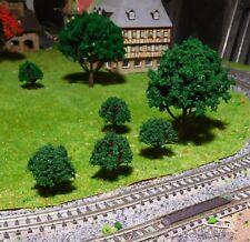 20 dunkelgrüne Laubbäume, je 10 Stück 30 und 80 mm hoch - versandkostenfrei