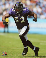 Baltimore Ravens RAY LEWIS Glossy 8x10 Photo NFL Football Print Action Poster
