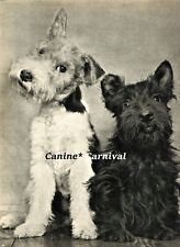 A Smili