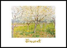 Vincent van Gogh The Orchard Poster Bild Kunstdruck im Alurahmen schwarz 50x70cm