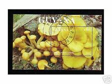 0667++GUYANA  BLOC CHAMPIGNON  N°8