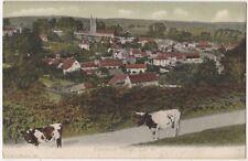 Carisbrook Village, Isle of Wight F.G.O. Stuart 151 Postcard B800