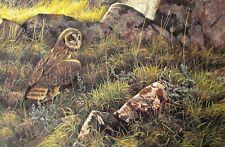 Vintage Art Robert Bateman 2 in 1 Prairie Evening Owl 1976 Cow Moose Pen 1979