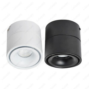 Dimmable/N LED COB Ceiling Lamp Fixture Rotatable Downlight Picture Spotlight
