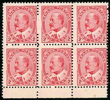 1903 Canada Stamp #90 Mint Never Hinged Average Original Gum Block of 6