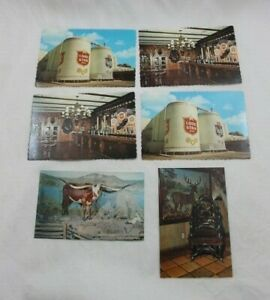 Lot 6 Lone Star Beer Brewery Post Cards Unused Buckhorn Hall San Antonio Texas
