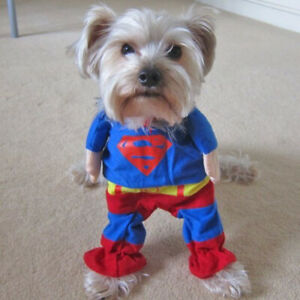 Funny Dog Superman Costume Superhero Clothes Cat Pet Apparel Weekend Party
