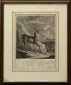Ridinger, Johann Elias (1698-1767) - Hirsch Graf von Lengheim 1744