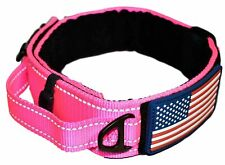 Diezel Pet Products Dog Collar with Control Handle Quick Release Metal Buckle...