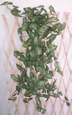 Artificial flowers & plants Butterfly Plant Long P28 - SPECIAL CLEARANCE PRICE!!