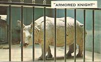 AG(R) The Chicago Zoological Park, ILL: Armored Knight