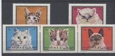 CHAT Fujeira série de 5 timbres ** NEUF PORT OFFERT - CAT KATZE
