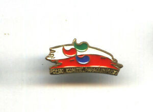POLAND Paralympic Team pin TOKYO 2020 undated Olympic NOC badge