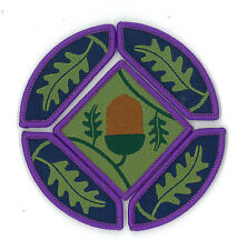 SCOUTS OF UNITED KINGDOM / BRITISH - UK SCOUT YOUNG LEADER AWARD BADGE SET OF 5