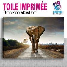 60x40cm - TOILE IMPRIMÉE TABLEAU  POSTER DECO - ELEPHANT FELIN -EL10-01T