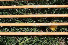 Cx Heritage 150 arrows 1 dozen nocked, fletched, inserts & points