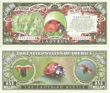 Ladybug Ladybird Beetle Coccinella Magnifica Million Dollar Bills x 2 Insects