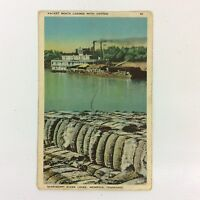 Cotton Packet Boats Postcard Mississippi Levee Memphis Tennessee Divided Back