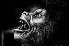 Framed Print - Werewolf Howling at The Moon (Gothic Animal Picture Vampire Art)
