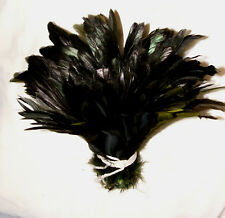 """1 yd Strung  Rooster Coque Tails Moss Green 8-10"""" L"""