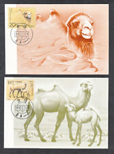 PEOPLES REPUBLIC OF CHINA #2433 & #2434 CAMELS 1ST DAY COVERS FEB 20 1993