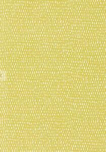 NEW Scion Totak 'Guess Who?' Wallpaper, Citrus, 111274