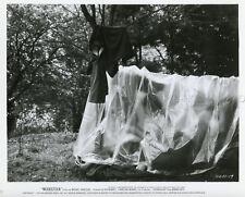 WOODSTOCK 1970 VINTAGE PHOTO ORIGINAL #31  DRUGS HIPPIES PEACE & LOVE