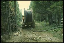 489044 Cable sobre grandes orugas portador en Bush A4 Foto Impresión