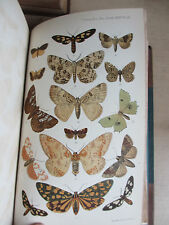 Transactions of Entomological Society of London, 1888-90  3 vols., col. plates