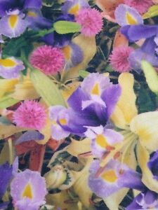 PHOTOGRAPH PRINT FABRIC floral flowers stretch knit material purple pink iris