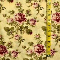 MODA by Robyn Pandolph Cotton Quilting Fabric 2 yds MORNING GLORY