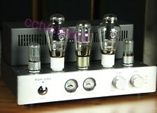 Vacuum Psvne 300B Tube Amplifier Valve Audio Amp Single Ended Class A Amplifier