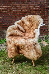 Sheepskin Rug Wolf Tipped Large 100% Sheepskin Rug Light Brown Tipped XLARGE