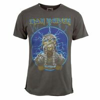 Official Amplified Mens Iron Maiden Mummy Rock T Shirt Charcoal NEW