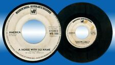 Philippines AMERICA A Horse With No Name 45 rpm PROMO Record
