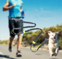 Hands Free Dog Leash Straps for Running Walking Jogging & Hiking Retractable
