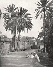 ALGERIA. Biskra. Marabout de Sidi- Lhassen 1900 old antique print picture