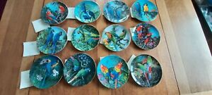 """12 FRAGILE PARADISE PARROT PLATES by WEDGWOOD.. 8"""" DIA With CERTIFICATES"""